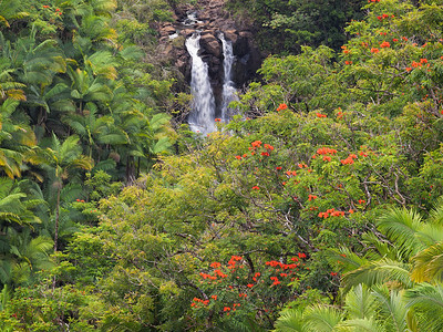 Waterfalls, Hawaii