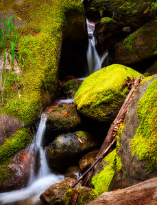 Waterfall, Castle Rock State Park, California, 2010