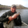 Dixon with a very nice brown trout, Missouri River Montana May 8, 2008