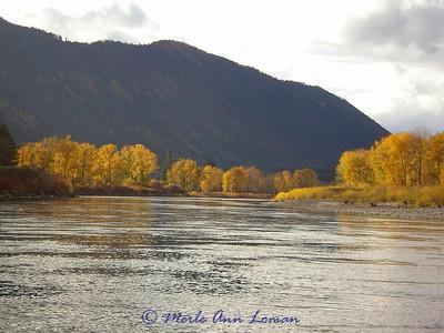 Nov 4 - lower Clark Fork, Spectacular fall colors