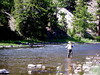 Dave wade fishing a run - late August