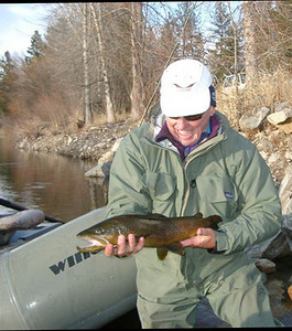 March on the Bitterroot - Brown Trout