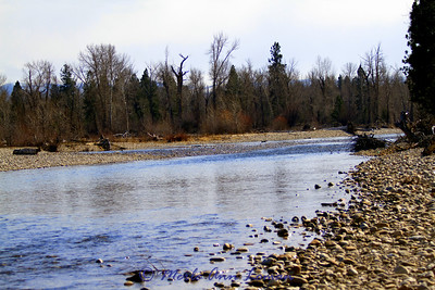 Taken from banks of the Bitterroot about a mile north (downstream) of Woodside crossing. The river really braids through here - gets skinny.