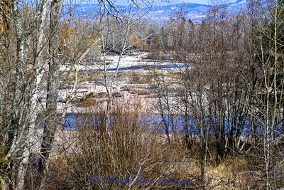 Taken from banks of the Bitterroot about a mile north (downstream) of Woodside crossing. The river really braids through here - gets skinny. Looking down river.