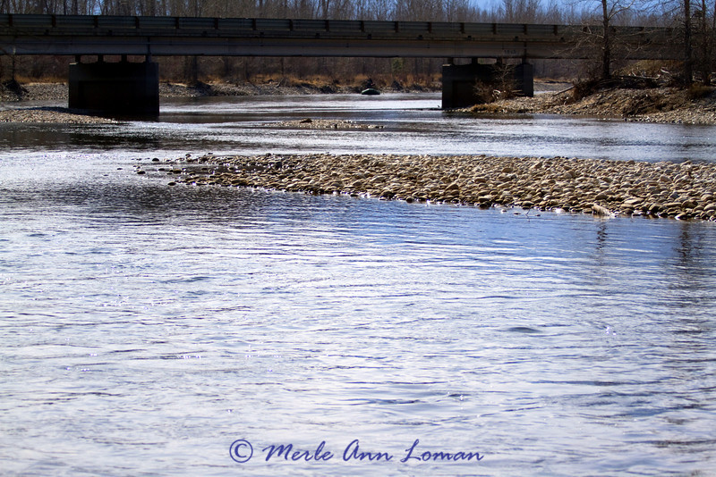 Taken from parking lot of Woodside crossing and bridge a few miles north of Hamilton, MT. Looking up-river (south). A boat is coming.