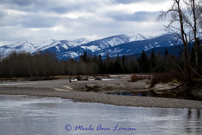 Looking south, upstream, at Stevensville FAS. Big gravel bar on this corner of the river.