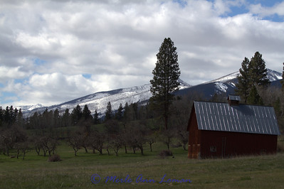 Snow in the mountains in May. It will soon come down into the streams and river.