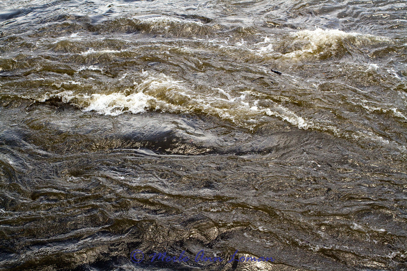 Water on the upriver side of Bell Crossing bridge