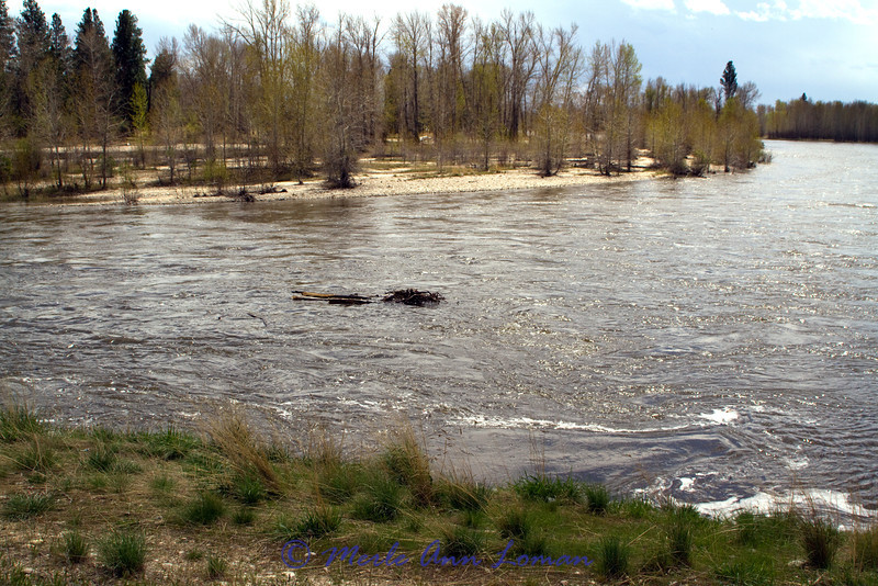 Bell Crossing looking upriver - south