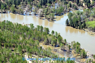 how a side channel originates from the main stem in higher water levels. Flooded cottonwood and pondersa pine communities.