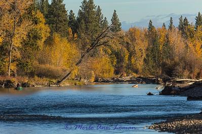 Bitterroot River near Tucker Crossing at 9 am 10.22.2014.