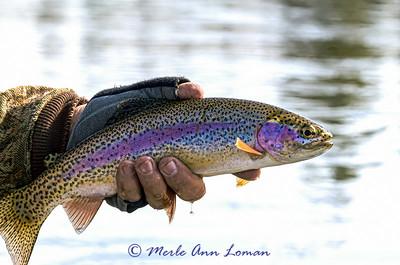 Fishing with Eric - IMG_8043