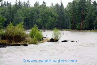 Bitterroot River, Victor Crossing June 4, 2010 - highwater