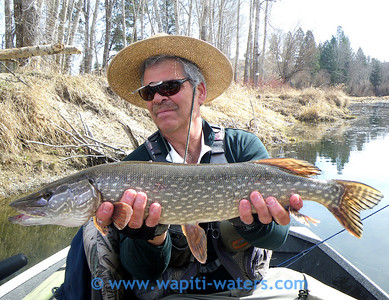 Jack and his pike