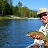 Phil and his Bitterroot River rainbow trout.