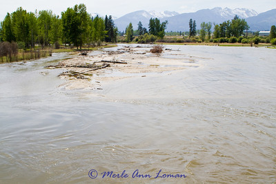 May 16, 2012 - looking upriver (southwest) from Victor Bridge. 4520 CFS at Darby gauge and 7220 CFS at Bell Crossing gauge.