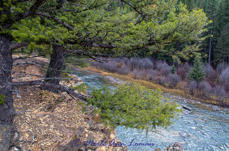20141029-3R9B1424-H-Blackfoot
