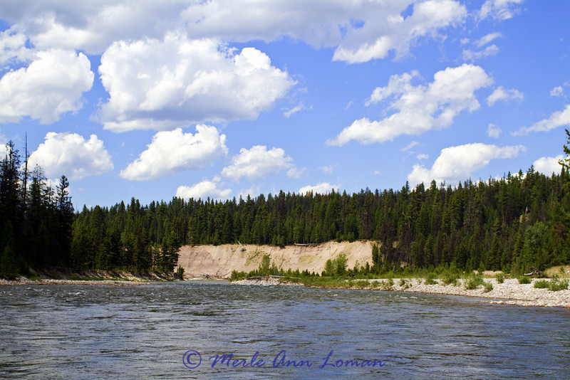 In seeing this bank, Jack began to talk about how in his experience, this seems to be one of the most erosive and dynamically changing rivers of western Montana.