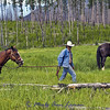 Time to gather up the horses and head further up the trail.