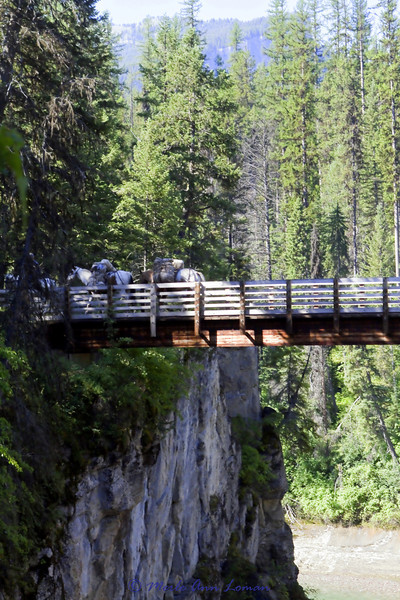 Bridge over the river near start of trail from Packer's Roost.