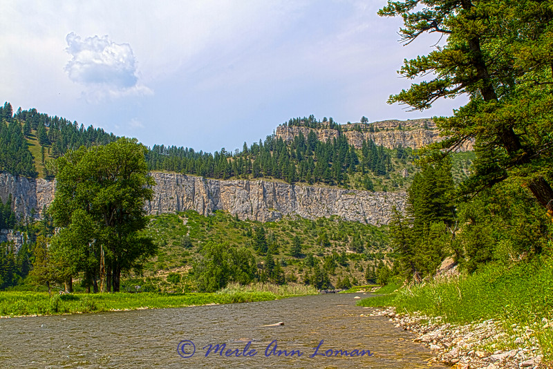 Montana, Smith River in July - Image 6338
