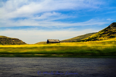 Old Montana homestead on the Smith River in July - Image 6430