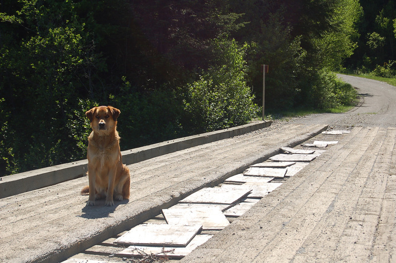 Bogie on Bogie's Bridge, upper Dead Diamond