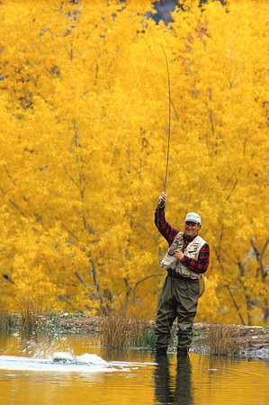 Fly Fishing-Colorado-103
