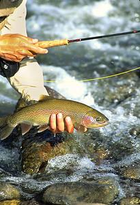 FF Roaring Fork River-103