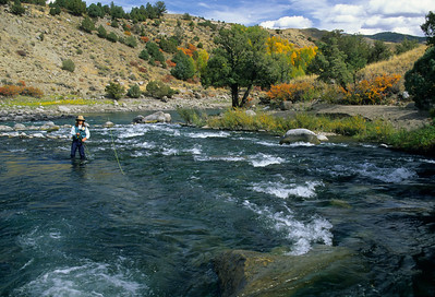 Yellowstone River-103