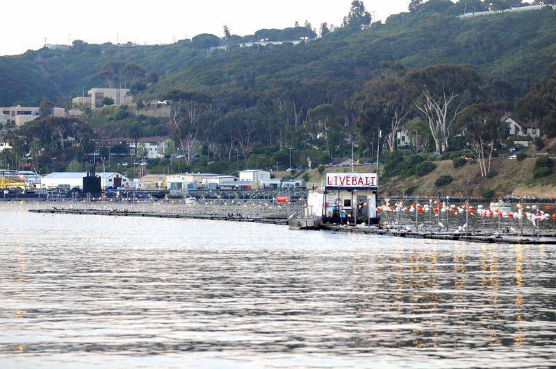 Live Bait vendors floting in San Diego Bay