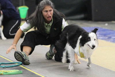 Flyball MAINEia 2012
