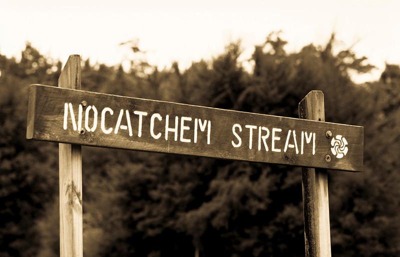 Nocatchem Stream