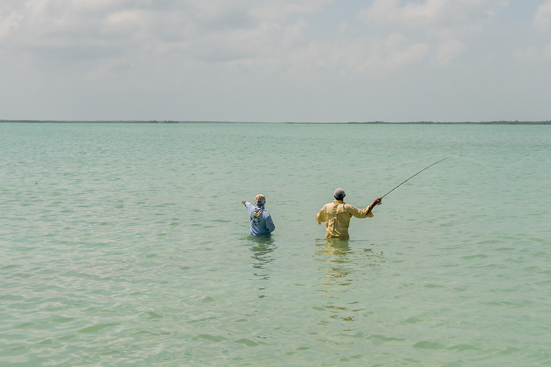 A picky tailing permit - tolerated 12 casts before moving on