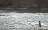 High Sticking, Lower Yuba River, CA