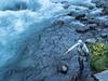 Fall Streamer Fishing on the McCloud River