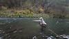 Fly Fishing a Nice Run on the McCloud River, CA