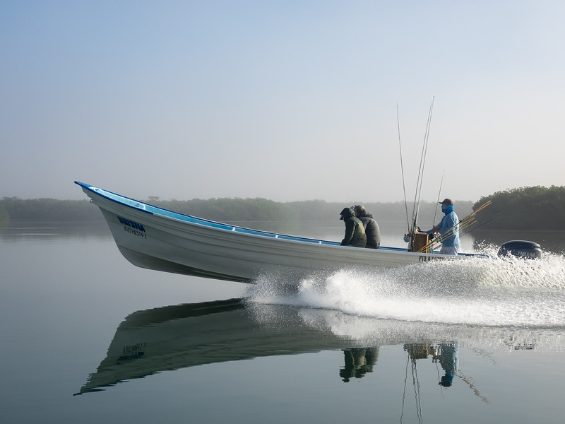 Heading Out for a New Day of Fishing