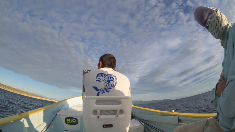 In Search of Dorado, Baja MX
