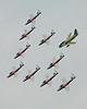 9457 Snowbirds with Hawk One