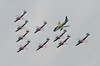 9451 Snowbirds with Hawk One