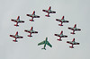 9481 Snowbirds with Hawk One