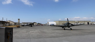 Hellcat pre taxi tests, and the Bf 109 after a brief taxi test.  July 2013 at the FHC.