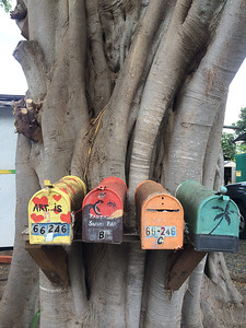 Haleiwa Mail boxes