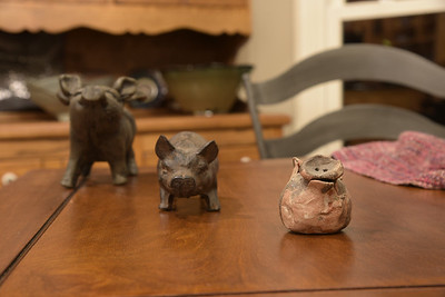 Right Pig in Focus