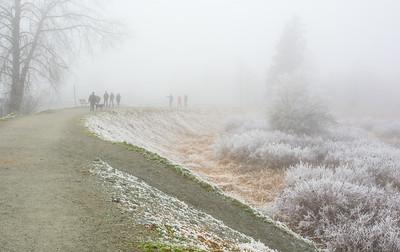 Family Stroll in the Fog