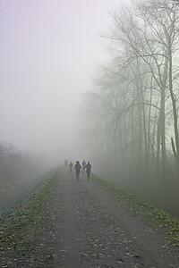 Jogging on the PoCo Trail