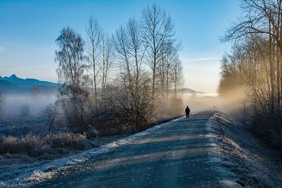 JW2_3288_fog-poco-trail