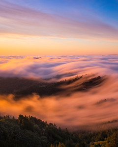 Sunrise Fog Waves, Mt.Tamalpais State Park, CA