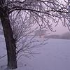 More Hoar Frost